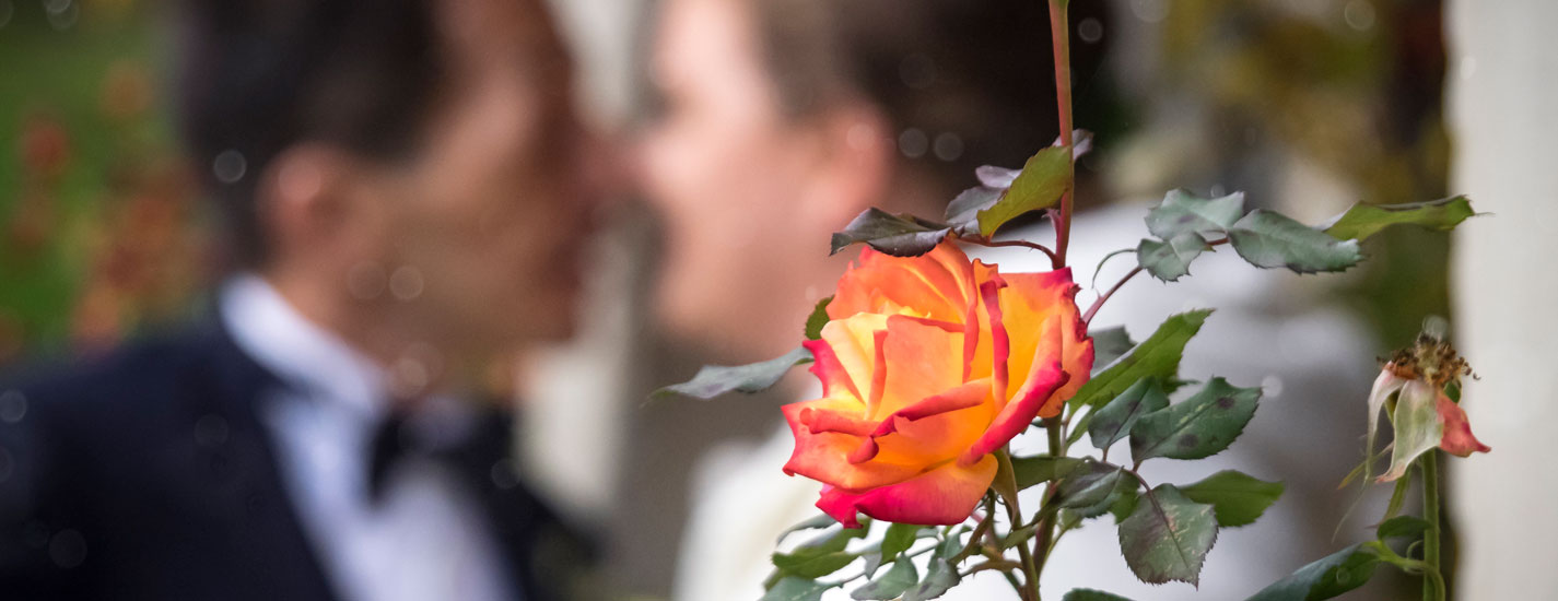 Hochzeitsfotografie, Rose